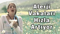 Alerji Hastalığı Hızla Artıyor