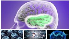 Epilepsi Hastalarında Beslenme